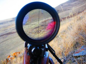 scope sight