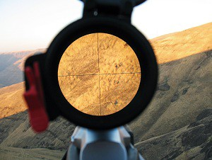 DeerHunting_RifleScopeReviewsImage300
