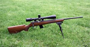 17 hmr scope