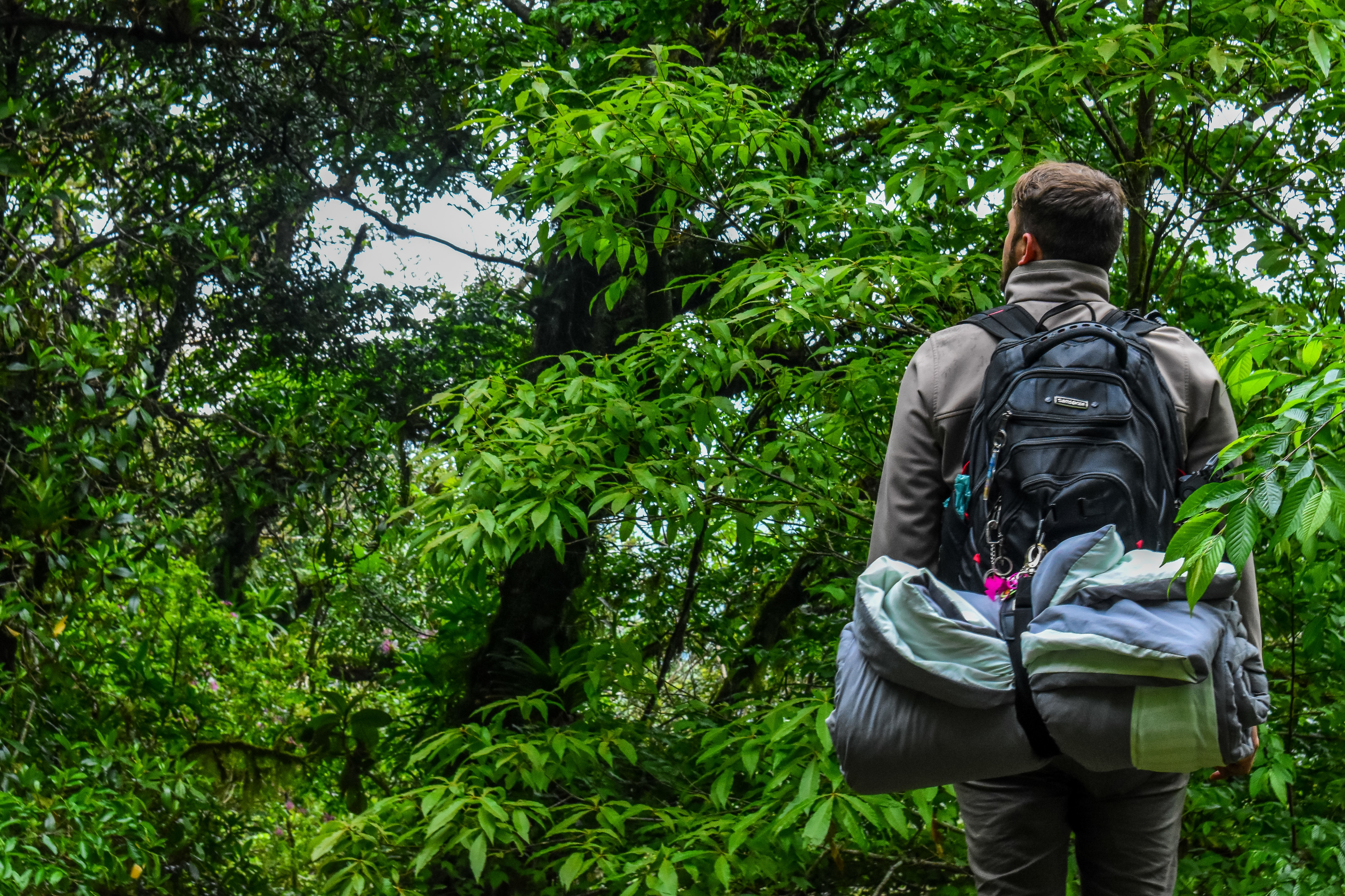Love the Outdoors? Here Are 55+ Amazing Tips To Survive The Wild
