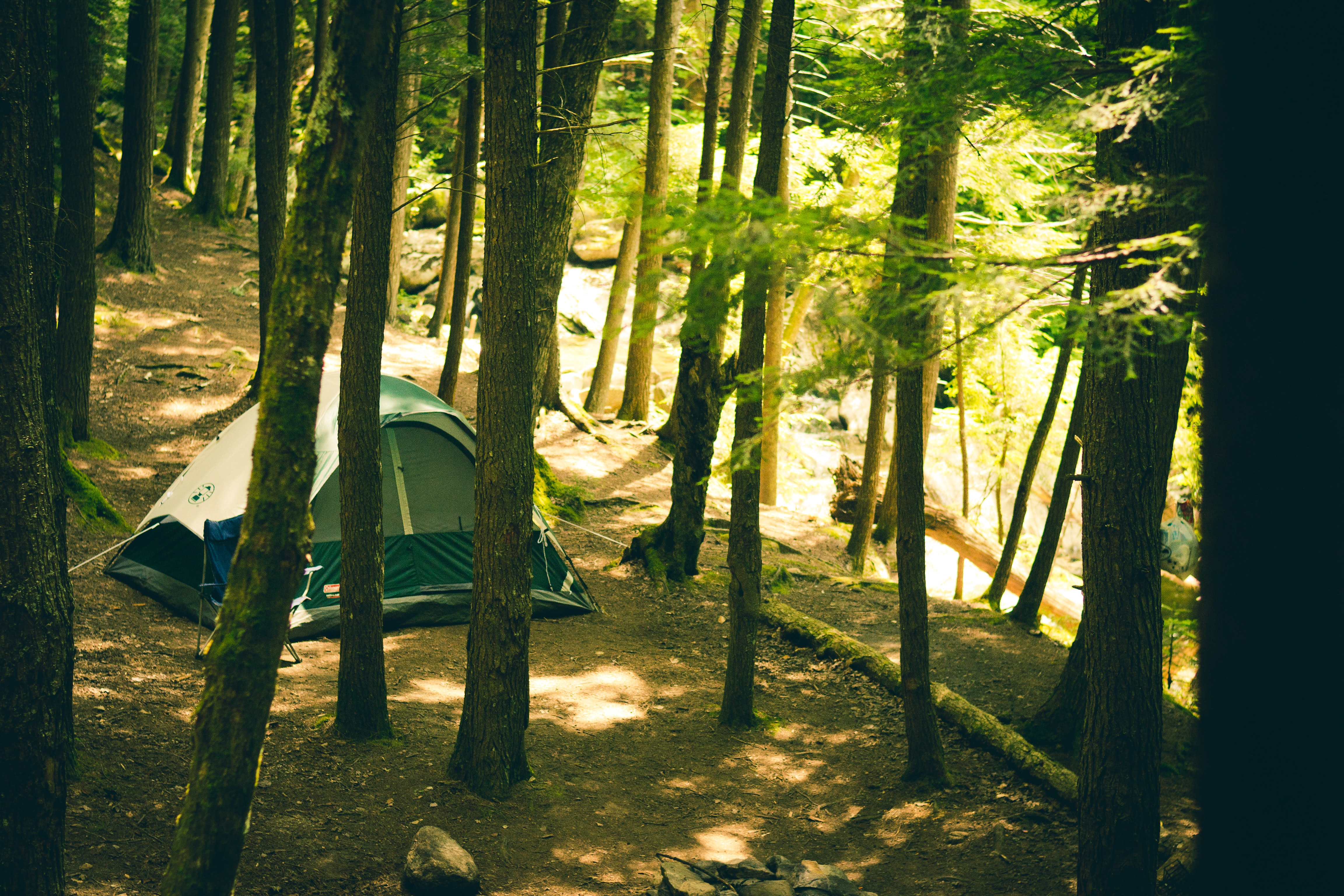 adventure camping forest