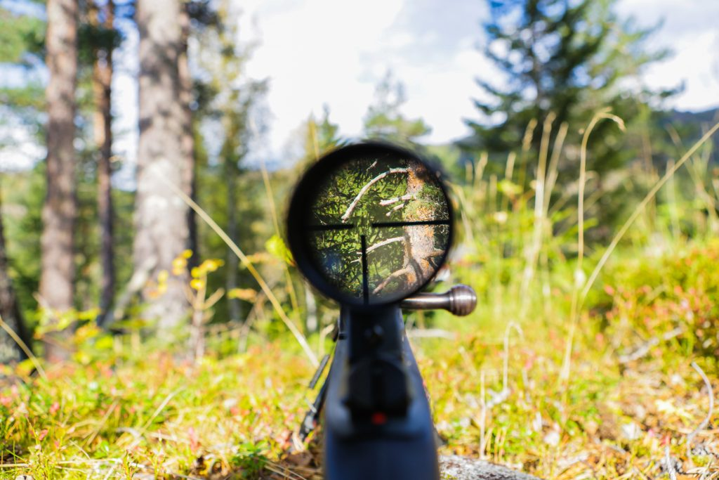 fixed magnification scope