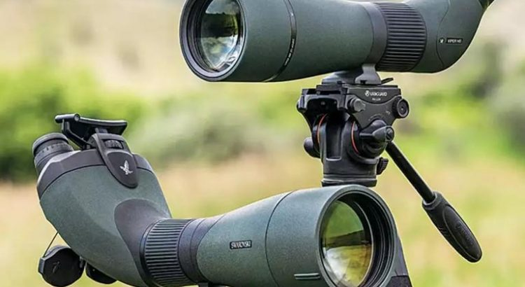 BSA Scopes Review For Hunting And Tactical Use 2019 - Best