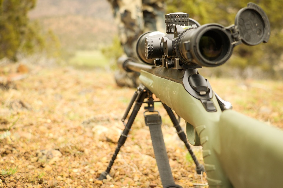 Let's Get Zeroed: A Newbie's Guide to Pro-Level Rifle Shooting